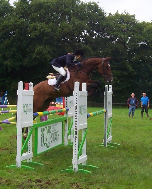 Obstacle, cso, oxer