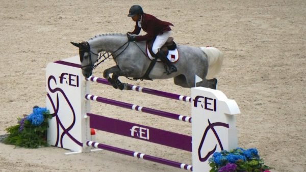 obstacle, vertical, cso